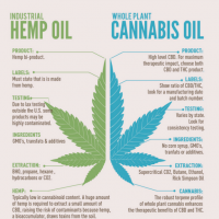 Quantum 9 | Difference Between Industrial Hemp Oil and Whole Plant CBD Oil  | by Quantum 9, Inc. | Cannabis Consulting Firm | Medium