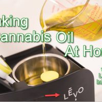 How To Make Cannabis Oil At Home With LEVO Infusion