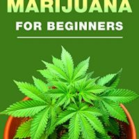 How Long Does It Take to Grow Weed Indoors?   Grow Weed Easy
