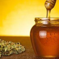 Recipe: How To Make Cannabis Infused Honey - Zamnesia Blog