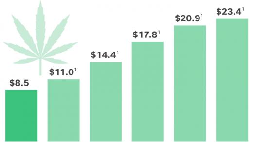 Marijuana stocks 2018: Why investing in pot has risks, rewards