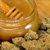 The Benefits Of Cannabis-Infused Honey   High Times