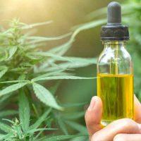 Cannabis Oil Complicates Drug Testing