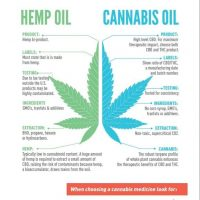 How To Make Cannabis Oil - Honest Marijuana