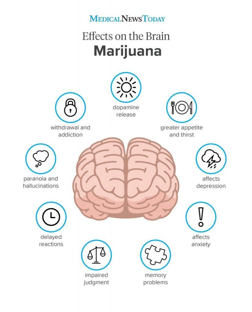 What are the effects of marijuana on the body?