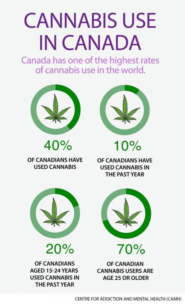 Marijuana should be legalized and regulated: CAMH   Globalnews.ca