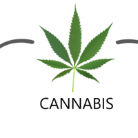 FDA and Cannabis: Research and Drug Approval Process | FDA