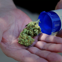 What Is Marijuana and How Is it Used? - TheStreet