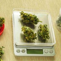 FAQ: How Much Is A Gram Of Weed? An Ounce?