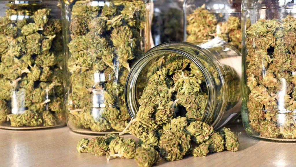A Guide To Curing Weed: How To Do It Properly - Wikileaf