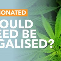 Most Britons want medicinal cannabis legalised: Sky Data poll   UK News    Sky News