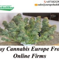 The ideal way to Buy Cannabis Online by europebudshop0 - issuu