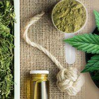 Hemp vs. Marijuana: What Is the Difference?
