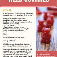 Paleo Edibles: Easy & Healthy Cannabis Gummy Bear Recipe [Updated in 2020]  - Wake + Bake