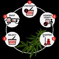 Cannabis Web Store - Sell Cannabis Online