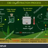 The Best Cannabis Extraction Methods for Marijuana Concentrates   Articles    Analytical Cannabis