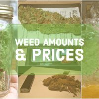 How Much is a Gram, Eighth, Quarter, Half, or Ounce of Weed