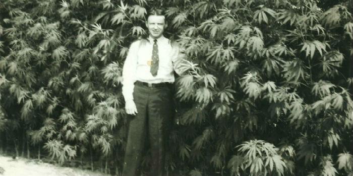 The History of U.S. Marijuana Prohibition - CNBS
